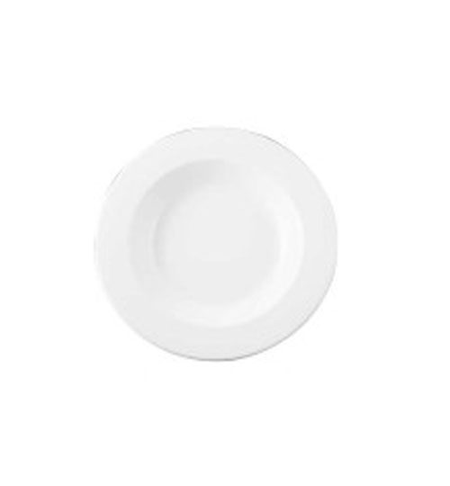 11 inch pasta plate